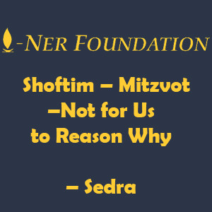 Shoftim – Mitzvot –Not for Us to Reason Why
