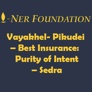Vayakhel Pikudei  Best Insurance  Purity of Intent
